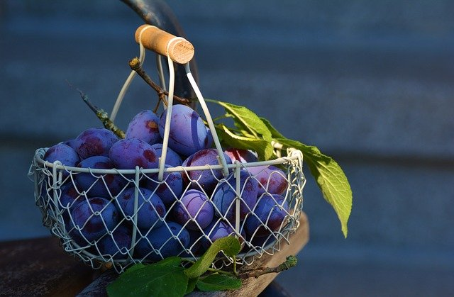 basket dream meaning