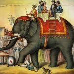 circus dream