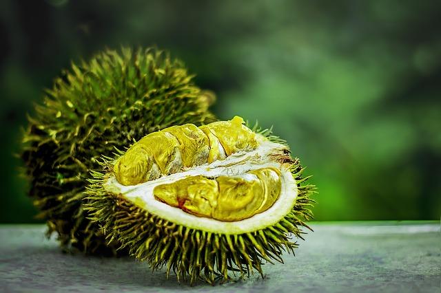 durian dream