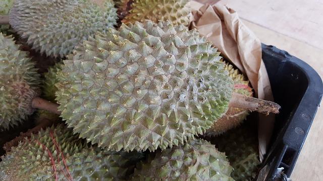 durian symbol