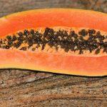 papaya dream