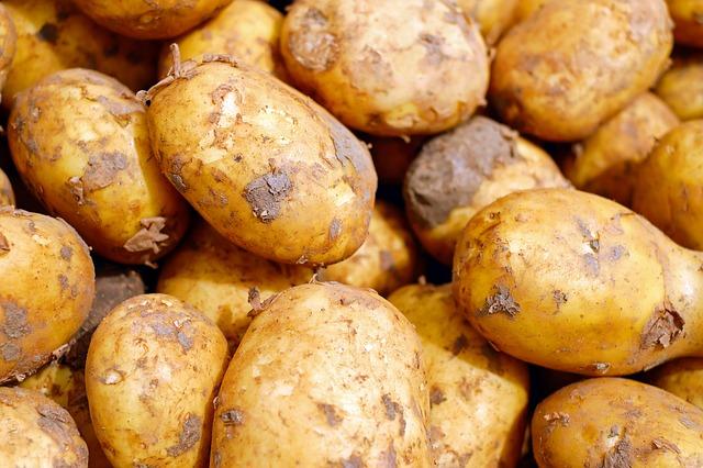 potato dream