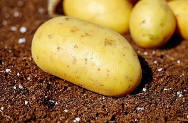 potatoes symbol