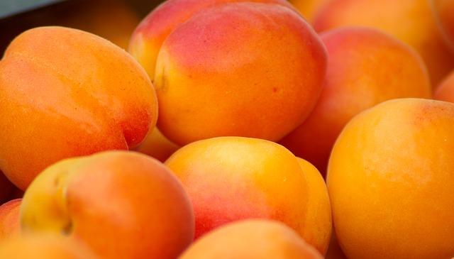 apricot dream