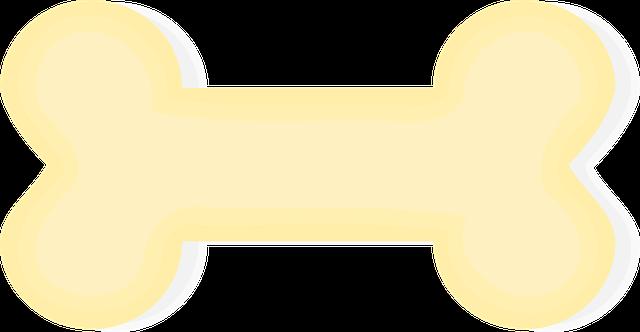 bone dream meaning