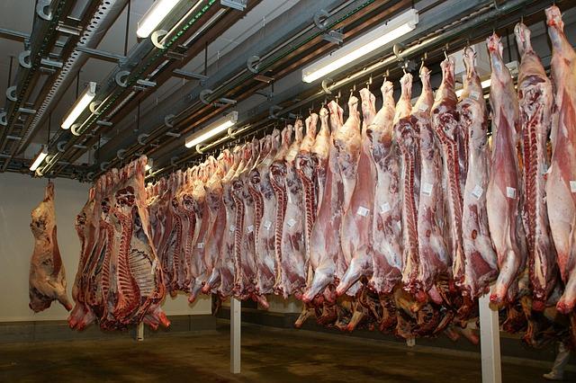 slaughterhouse dream