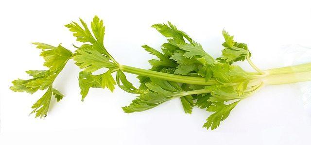 celery dream interpretation