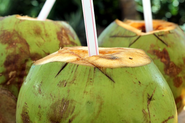 coconut dream meaning
