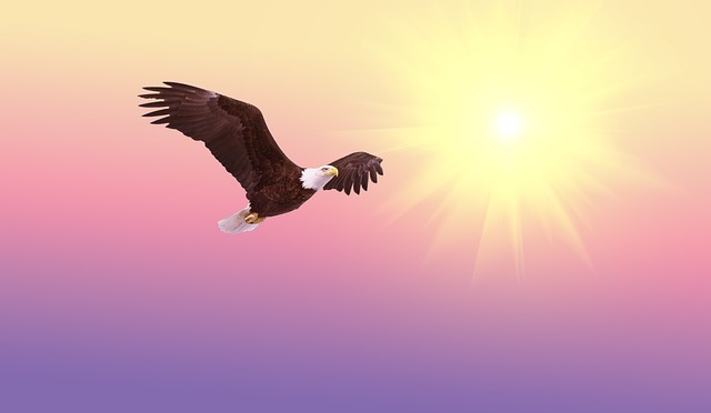 eagle dream meaning