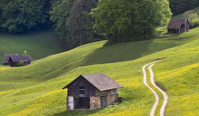 hut dream shack