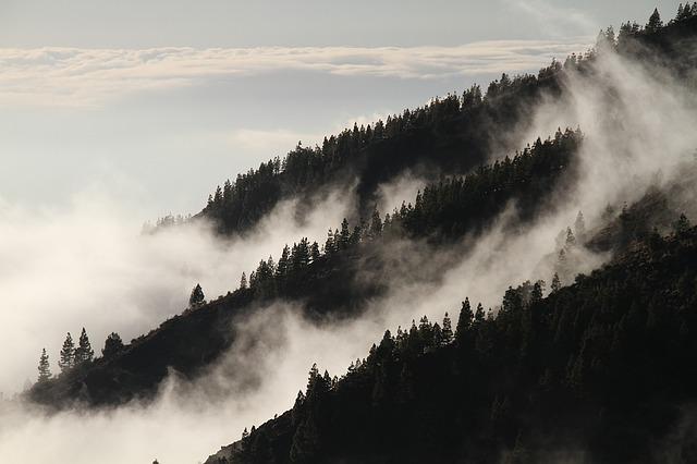 fog mist dream meaning